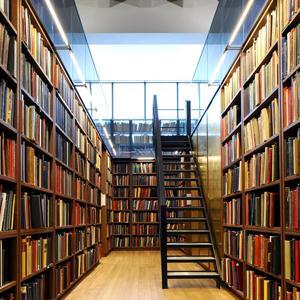 Библиотеки Лисьего Носа