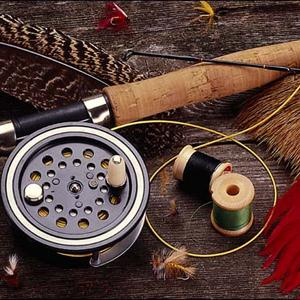 Охотничьи и рыболовные магазины Лисьего Носа