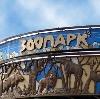 Зоопарки в Лисьем Носе